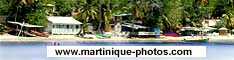 Discover the beautiful island of Martinique through a collection of photos, classified by topics.